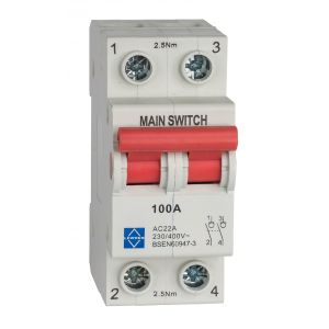 Economy Main Switch - 100A DP