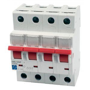 Economy Incomer - 4 pole 125A mains switch